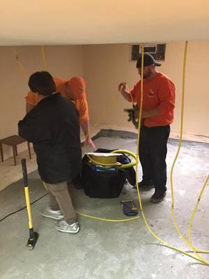 Mold Remediation Technicians
